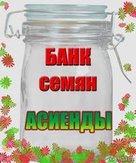 БАНК АСИЕНДЫ. Воронежская область. Отдам в дар семена однолетников.