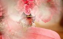 Кто жрет лепестки на розе и как с ним бороться?