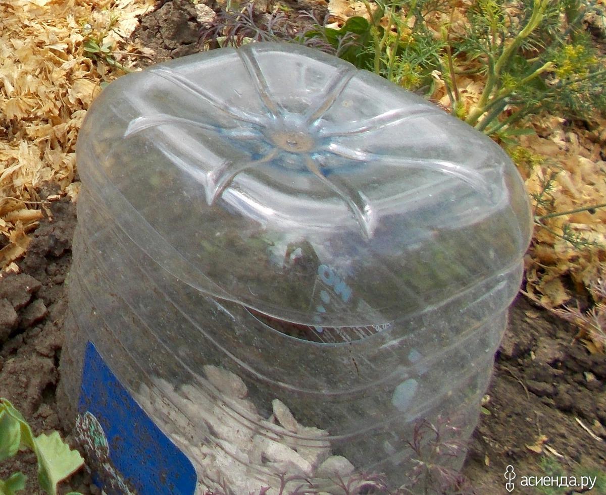 Капельный полив из пластиковых бутылок своими руками 148