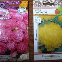 Шпаргалка по посеву семян на рассаду. Вторая декада марта (10-20 марта)