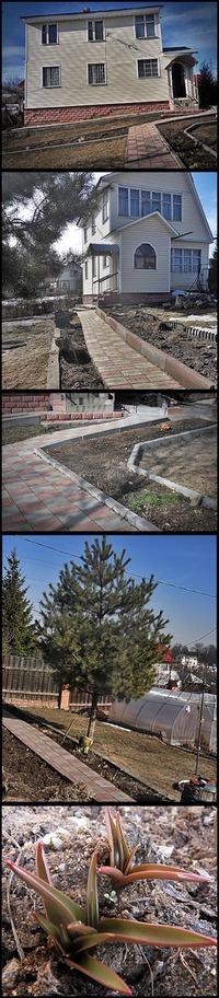 Дача, Подмосковье. март 2015