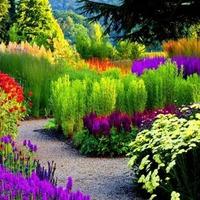 Цветовая палитра сада