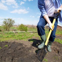 Работа в саду без боли и травм