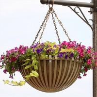 Подвешенный цветник