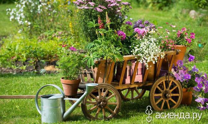 Обустраиваем цветник в деревенском стиле