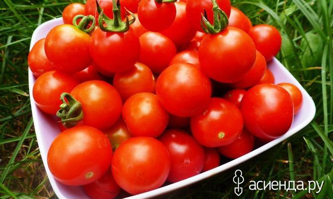 Как правильно хранить помидоры. Часть 2