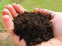 Состав почвы, как определить