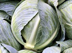 Как сохранить капусту. Часть 3