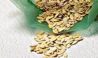 Ищу проверенные семена огурцов и чеснока...
