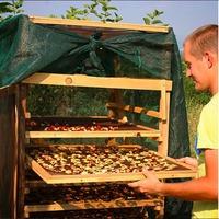 Солнечная сушилка (+видео) для фруктов, овощей и трав.