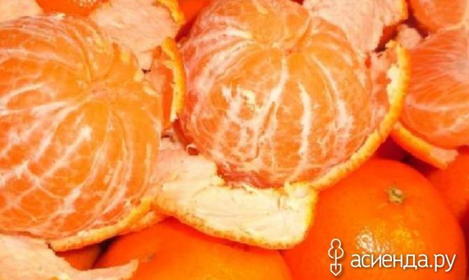 Холодостойкий мандарин