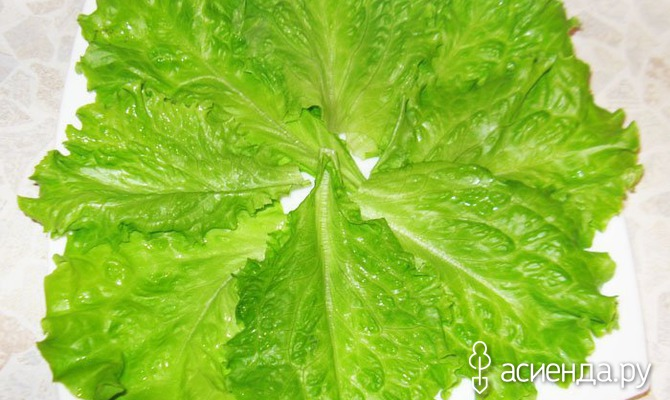 Как правильно хранить листья салата