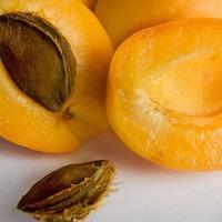 Как правильно хранить абрикосы