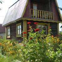 Август 2016. Юг западной Сибири. Фотоотчет
