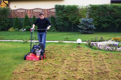 Скарификация газона