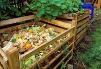 Вред компоста для растений