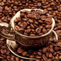 Удобряем огород с помощью кофе