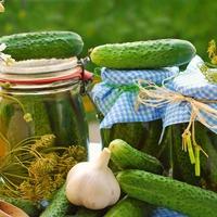 Как отличить салатные огурцы от засолочных?