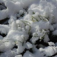 Зима. Дубль 3