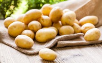 Какой картофель вкуснее и урожайней?