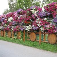 Декорирование забора, садовых ограждений