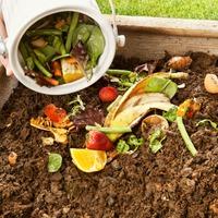 Секреты приготовления правильного компоста