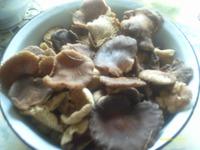 За грибами пойдём?