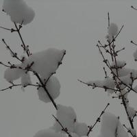 Зима. Дубль 2