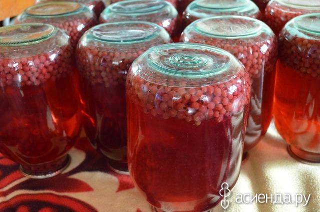 Заготовка красной смородины на зиму рецепты
