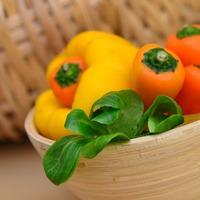 Болгарский перец в теплице: важные нюансы
