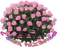 Дорогая Светочка поздравляю с днём твоего рождения.