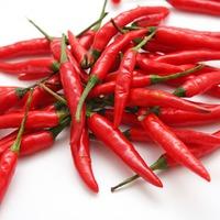 Перец – уход и выращивание