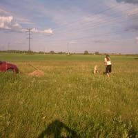 Вести с полей