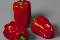 Условия для выращивания перца