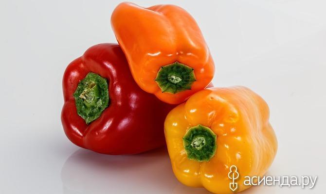 Перец сладкий: выращивание через рассаду