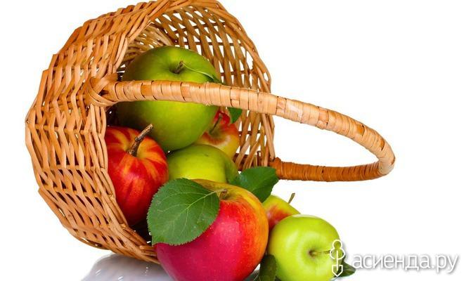 Яблоки: все ли готово к уборке урожая?
