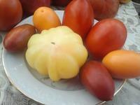 Про помидоры - 2 (продолжение)