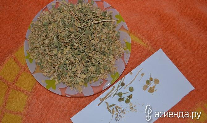 Машта — лекарственная трава из Египта