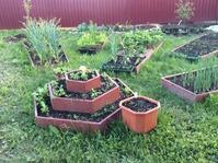 Я люблю свой огород