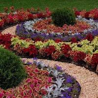 Цветники и клумбы своими руками