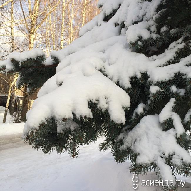 Прогноз погоды в омской области исилькульский район