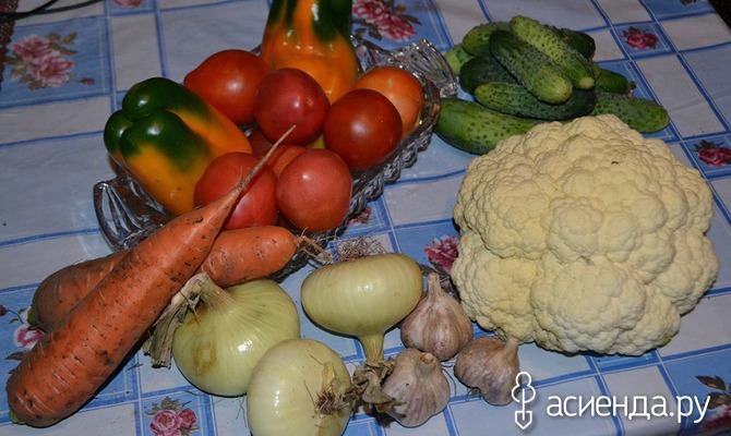 Витамины в огороде