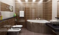 Помогите с расстановкой стратегическиважных объектов в ванной комнате!!!