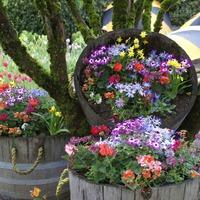 Делаем оригинальные вазоны для цветов