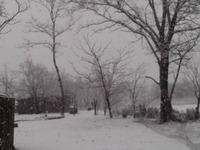 Опять зима пришла!!! Шок!