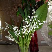 А я снова с цветочками!!!