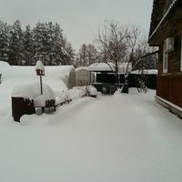 Кто бы мог подумать, что будет зима.
