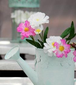 О талой воде и других тонкостях полива комнатных цветов