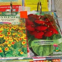 Закупки семян цветов на дачный сезон 2017