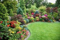 Грамотный подбор удобрений для сада